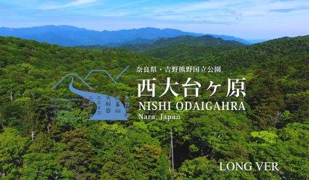 奈良県・吉野熊野国立公園「西大台ケ原」公式プロモーション(春夏編)