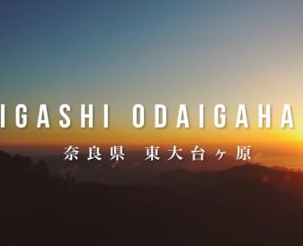 奈良国立公園「東大台ヶ原」