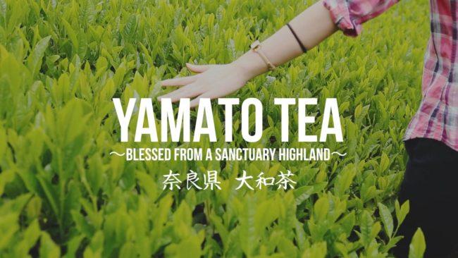 大和茶ダイジェスト