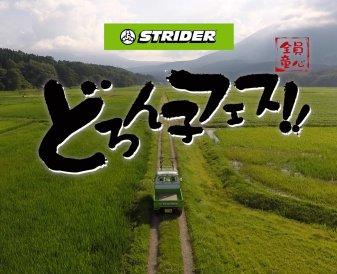 ストライダーどろんこフェス