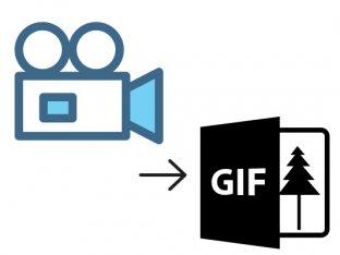動画からGIFアニメへ変換