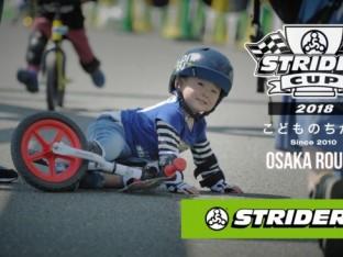 ストライダーカップ2018大阪の画像